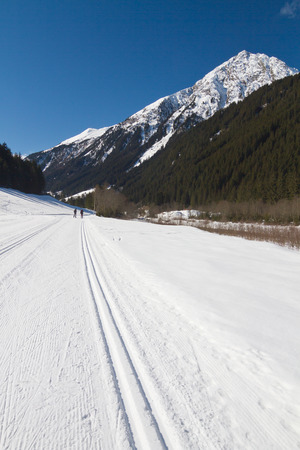 nordic ski: Winter landscape with cross country skiers Stock Photo