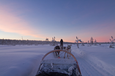 Husky sledge ride at sunset in winter wonderland (Lapland) Stock Photo