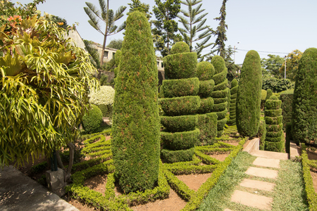 Funchal, Madeira island, Portugal - July 7, 2015: Topiary in the Botanical garden of Funchal. One of the famous gardens in Madeira island, with 2500 exotic plants from all continents. Topiary collection of the trees and bushes shaped artistically. Editorial