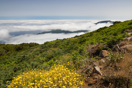 uplands: Spectacular view above clouds from the plateau Paul da Serra in Madeira island.