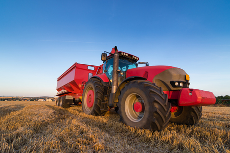 Agriculture tractor and tow trailer waiting to be filled at grain campaign at sunset Banque d'images