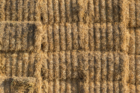 haystack: Stacked bales of straw - agricultural background