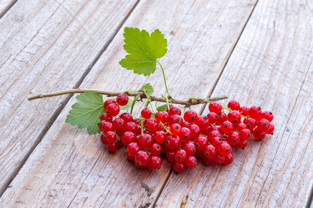 Fresh picked red currant berries on wodden background Stock Photo