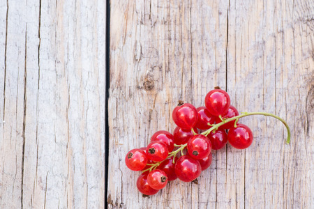One red currant berries on wooden background Stock Photo