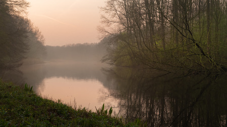 Early morning in Amsterdamse Bos - view of an Amsterdam forest in springtime. Calm and peaceful scene in Dutch countryside 写真素材