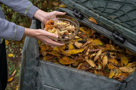 Male hands holding a bowl full of vegetable peels to be composted. Zero waste, sustainability and environmental protection concept