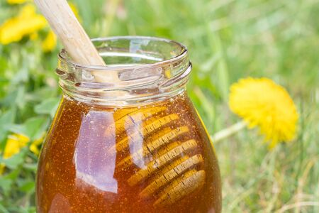 Close up view of homemade dandelion honey or syrup in rustic glass jars. Bowls of honey with wooden dipper in garden of dandelions. Concept of natural, countryside, organic and healthy product