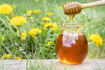 Homemade dandelion honey or syrup in rustic glass jar. Liquid honey pouring down from a wooden dipper in garden of dandelions. Concept of natural, countryside, organic and healthy product Banque d'images