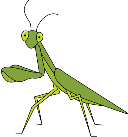 mantodea: I just look like a bad bug!  Actually I am a friend to the gardener and make a great addition to a garden shirt. Illustration