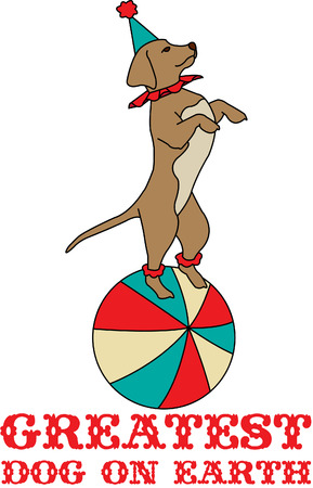 Its time for the circus and our little dog is ready to perform his tricks!  He is super cute as a part of a circus themed dcor!
