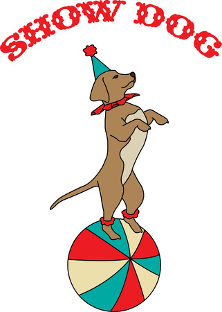 super dog: Its time for the circus and our little dog is ready to perform his tricks!  He is super cute as a part of a circus themed dcor!