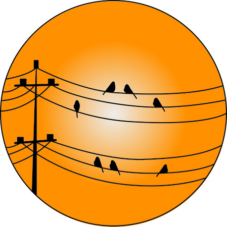 telephone pole: So many things on one design, birds on a wire, sunset, telephone poles!  We love it on pillows and decorative items!