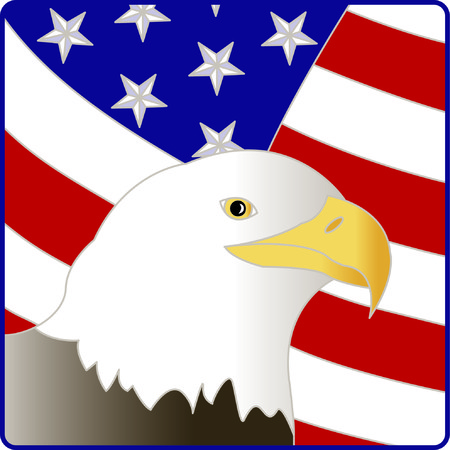 This bald eagle and flag are a stunning, visual sign of patriotism.  This design is wonderful as a support our troops dcor or a July 4 decoration.