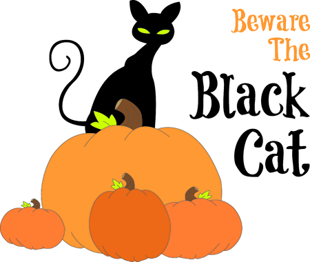 pumpkin patch: Standing tall on a stack of pumpkins, our black kitty watches out for Trick or treaters.  Halloween cant be far!