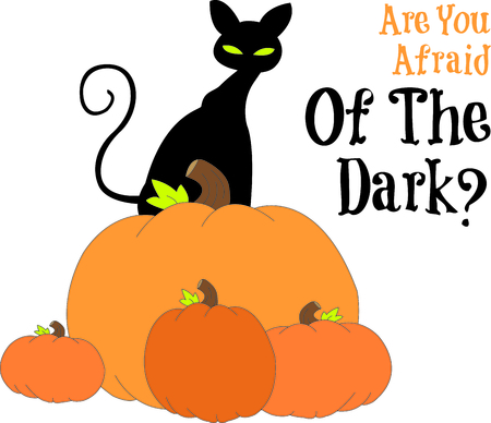 Standing tall on a stack of pumpkins, our black kitty watches out for Trick or treaters.  Halloween cant be far!