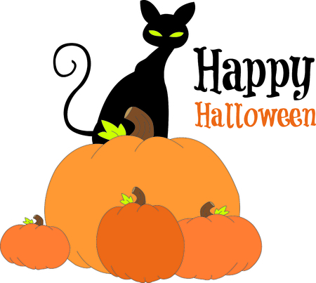 cant: Standing tall on a stack of pumpkins, our black kitty watches out for Trick or treaters.  Halloween cant be far!