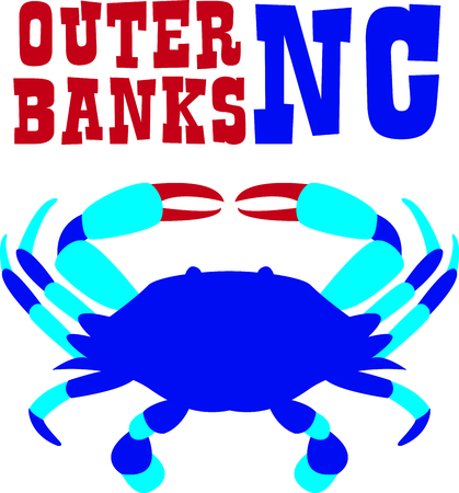 invertebrate: This blue crab is perfect for your beach house design. Illustration
