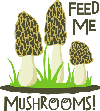 morel: This is perfect for gardeners who enjoy working in the yard so everyone will enjoy their vegetables.  They will love it!