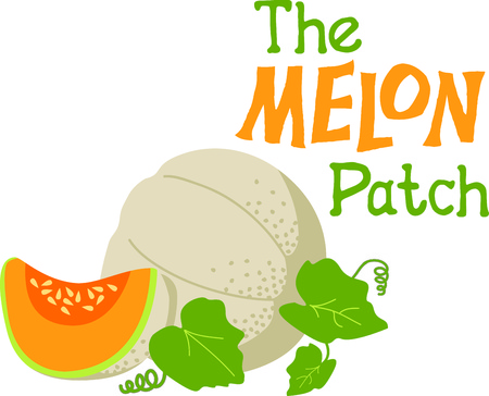 This is perfect for gardeners who enjoy working in the yard so everyone will enjoy the cantaloupe.  They will love it!