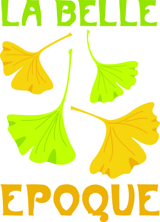 Ginkgo leaves are a old Chinese plant to help what hurts. 向量圖像