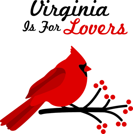 needed: Ever needed something cheerful to help you in the kitchen This Cardinal is perfect for the kitchen!