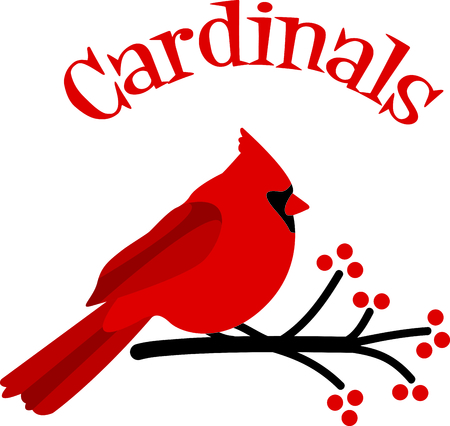 passerine: Ever needed something cheerful to help you in the kitchen This Cardinal is perfect for the kitchen!