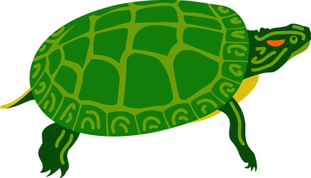 This slider turtle will look great on your design.  Make a perfect gift for a little boy.