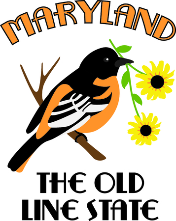 oriole: This bird is a cute image to add to your springtime design.