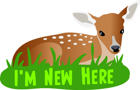 hart: This sweet fawn is a perfect design for a nursery.
