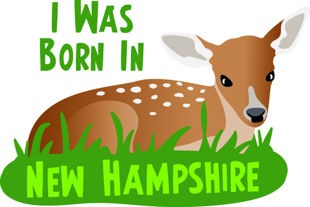 whitetail deer: This sweet fawn is a perfect design for a nursery.