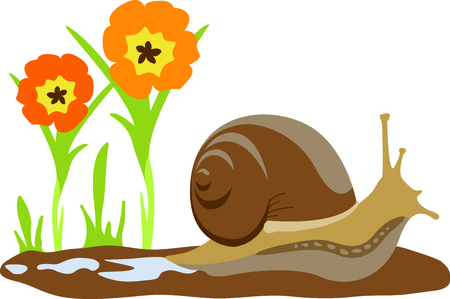 gastropoda: This cute snail in a garden of flowers is the perfect design for a child.