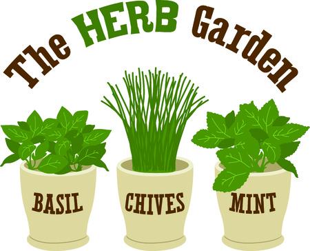 チャイブ: This is perfect for gardeners who enjoy working in the yard so everyone will enjoy their herbs.  They will love it!
