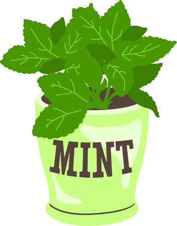basil herb: Esto es perfecto para los jardineros que disfrutan trabajando en el patio para que todos disfruten de sus hierbas. Se les va a encantar! Vectores