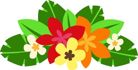 Kom en bezoek het eiland Hawaï! Surfers en strandgangers genieten van het tropische Hawaiiaanse eiland als hun reisbestemming. Stockfoto - 43745680