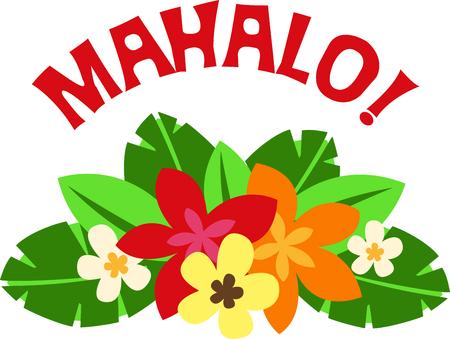 이리와 하와이의 섬을 방문! 서퍼와 해변 참석자들은 여행 목적지로 열대 하와이 섬을 즐길 수 있습니다. 스톡 콘텐츠 - 43745684