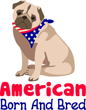 pedigreed: Celebrate our freedom on July 4th with this cute dog!  Perfect on items for family and friends to celebrate this day.  They will love it! Illustration