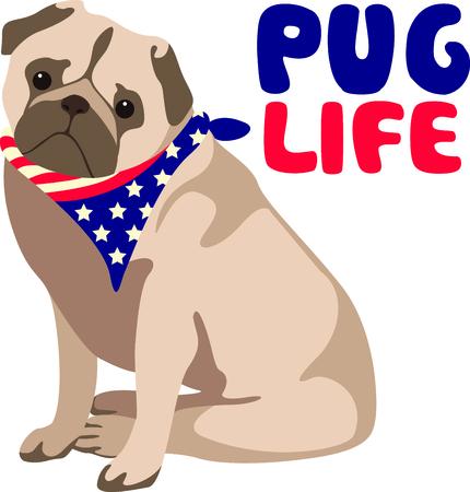 bred: Celebre nuestra libertad el 4 de julio con este perro lindo! Perfecto en art�culos para la familia y amigos para celebrar este d�a. Se les va a encantar!