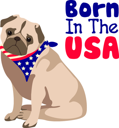 bred: Celebrate our freedom on July 4th with this cute dog!  Perfect on items for family and friends to celebrate this day.  They will love it! Illustration
