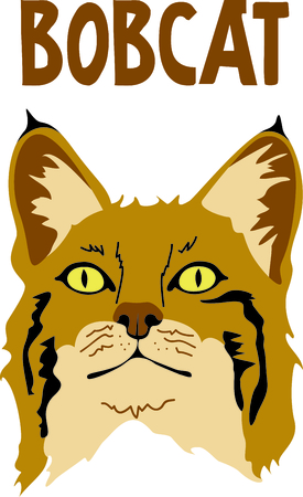 Show your team spirit with this bobcat logo.  Everyone will love it! Ilustrace