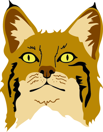 felid: Show your team spirit with this bobcat logo.  Everyone will love it! Illustration