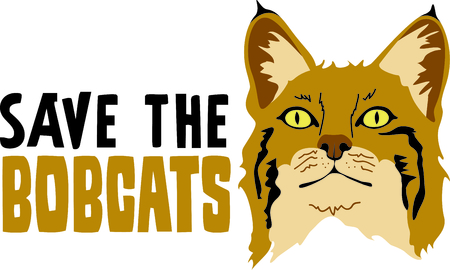 bobcat: Show your team spirit with this bobcat icon.  Everyone will love it!