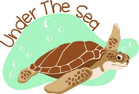 Sea Turtles are fun to watch at the beach.  Get this to remember your vacation. 向量圖像