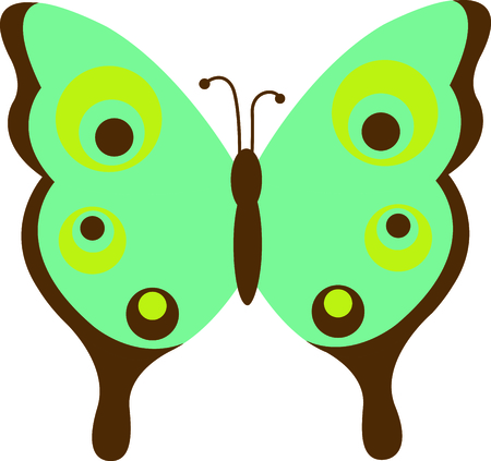 This is a beautiful butterfly for your summertime fun.