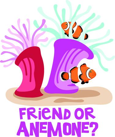 Deze clown vis is perfect voor uw nautische thema of kinderdagverblijf.