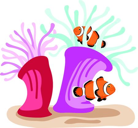 このカクレクマノミは海事の主題や保育園に最適です。  イラスト・ベクター素材