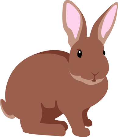 cony: Get bunny image for your next Easter design. Illustration
