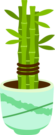 japanese garden: This Chinese Bonsai is perfect for your next design. Illustration