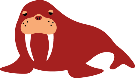 walrus: Get this cute walrus image for your next design.