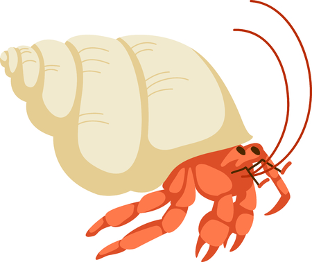 hermit: Hermit crabs are fun to watch at the beach.  Get this to remember your vacation.