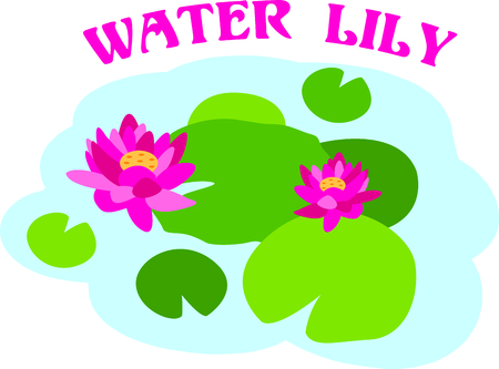 garden pond: Water lilies are beautiful in a spring pond.  Use this image in your next design.